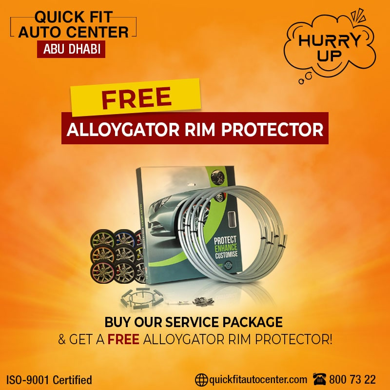 Ally gator Rim Protector offer