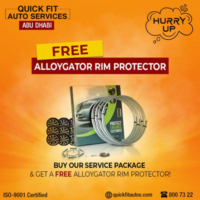 Free Alloygator Rim Protector